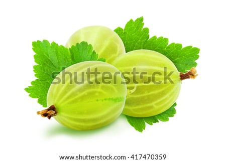Heap of fresh ripe green gooseberry berries with leaves isolated on white background. Design element for product label, catalog print, web use. - stock photo