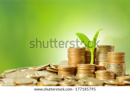 Heap of money coins with growing young tree over green background - stock photo
