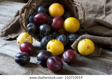 Heap of Ripe Sweet colorful Plums - stock photo