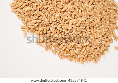Heap of spelt grain on white - stock photo