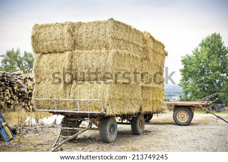 Heap of straw  - stock photo