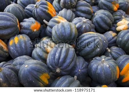 heap of tiny striped blue pumpkins - stock photo