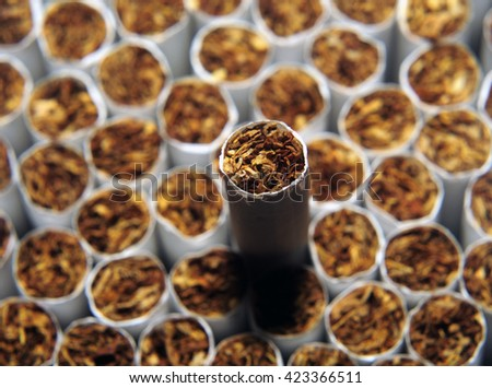 Heap of Tobacco Cigarettes, stack as a background texture, close up from the front