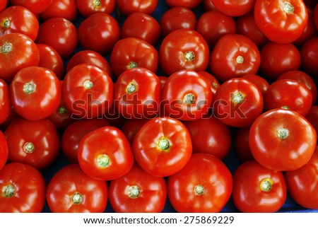 heap of tomatoes - stock photo