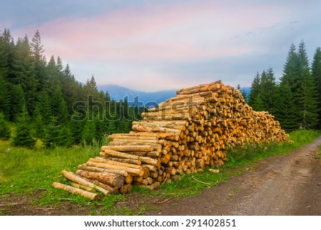 heap of trunk on a forest glade - stock photo