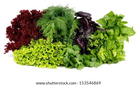 Heap of Various Fresh Greens with Lettuce, Basil, Mint, Dill and Parsley isolated on white background - stock photo