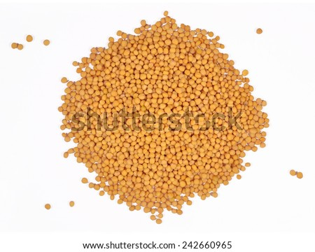 Heap of white mustard on a white background - stock photo