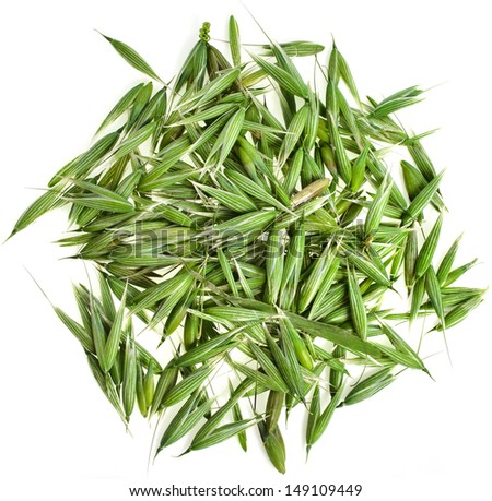heap pile of green fresh oat seeds top view surface texture closeup isolated on white background - stock photo