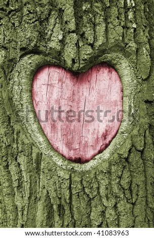 heart carved into the bark of an oak tree - stock photo