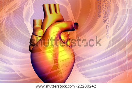 Heart  Digital illustration of a heart   3D - stock photo