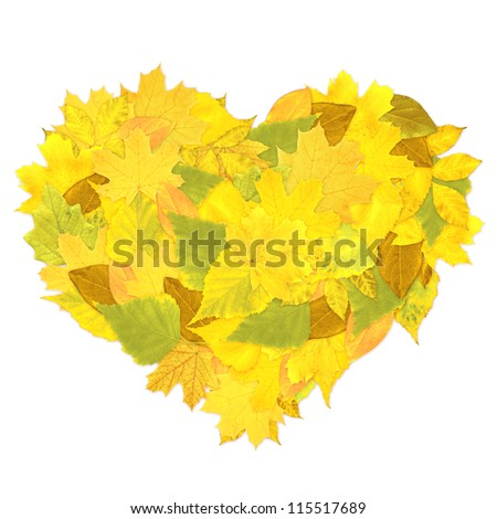 Heart from autumn leaves. Isolated over white - stock photo