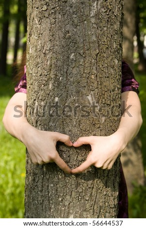 Heart from hands on a tree trunk