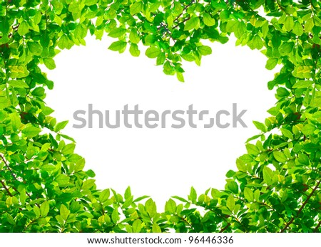 Heart Green leaves on white background - stock photo