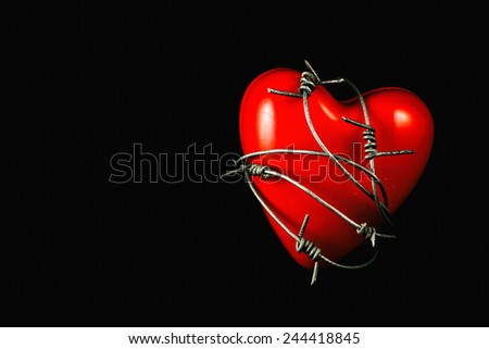 Heart in Barbed Wire on Black 2. A plastic heart wrapped in barbed wire fence. Valentines day concept. - stock photo