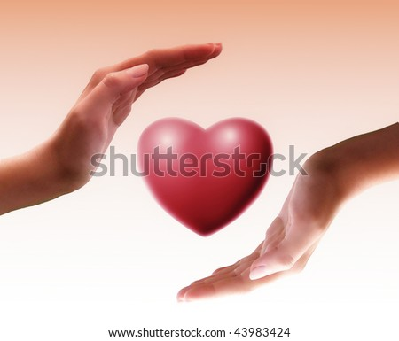 heart in hands - stock photo