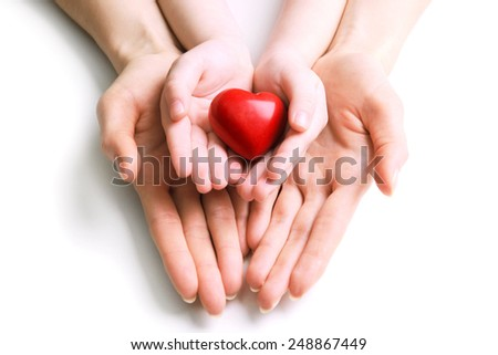 Heart in hands isolated on white