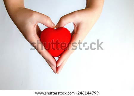 Heart in hands isolated on white background - stock photo