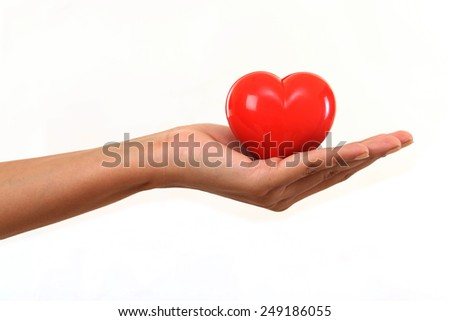 Heart in the hand isolated on white background - stock photo