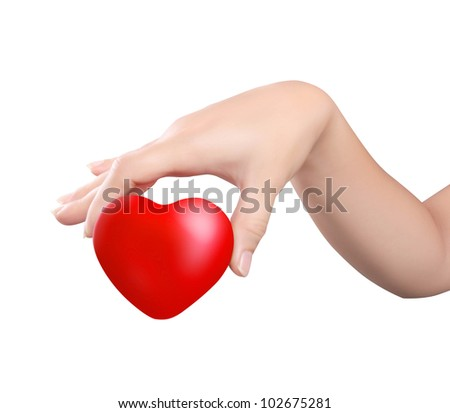 Heart in the hands isolated on a white background