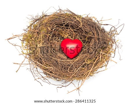 Heart in the nest isolated - stock photo