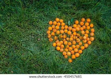 Heart, made of ripe apricots on the green grass in the garden. With copy space. - stock photo