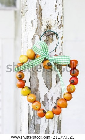 Heart made of rose hip fruits on wooden background - stock photo