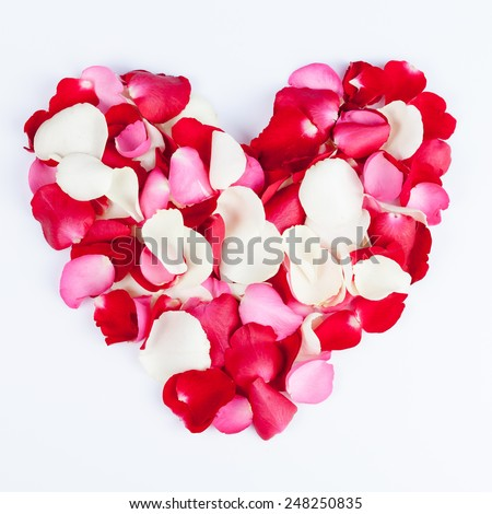 Heart made out of rose petals on white - stock photo