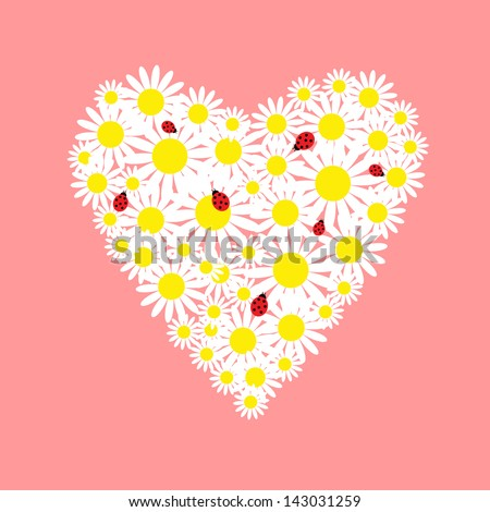 Heart of daisies with a red ladybugs - stock photo