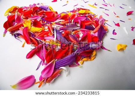heart of flower petals flying - stock photo