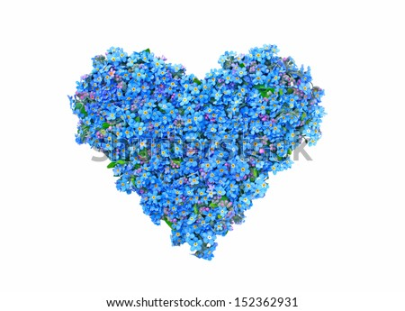 heart of forget-me-not - stock photo