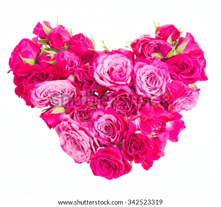 heart of fresh pink roses buds isolated on white background
