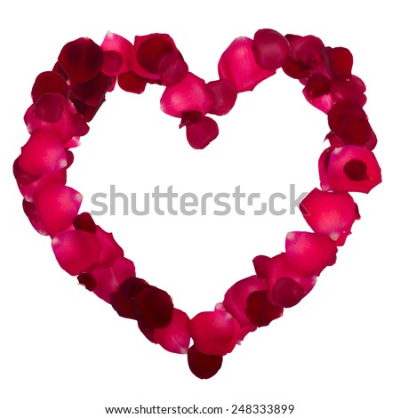 Heart of rose petals isolated on white background - stock photo