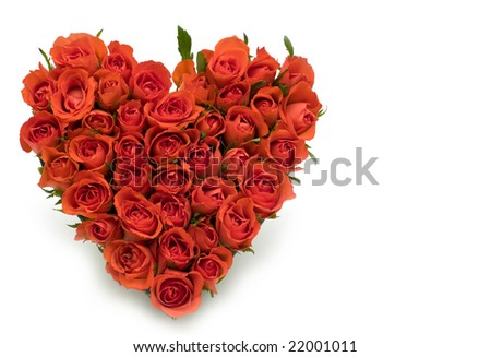 Heart of roses on white background