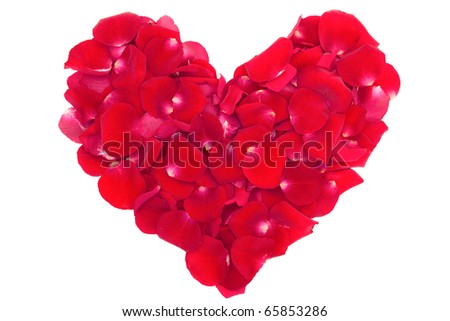 heart of the petals of red roses isolated on white - stock photo