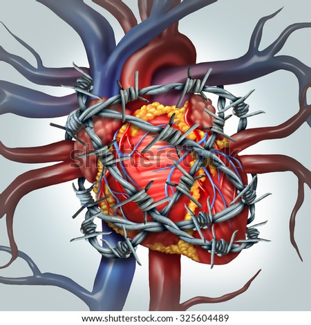 Heart pain medical health care concept as a human cardiovascular organ wrapped in sharp barbed wire as a metaphor for coronary problems and health decline in blood circulation. - stock photo