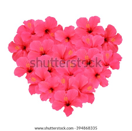 Heart shape bouquet made of Hibiscus flowers (Isolated on white background)  - stock photo