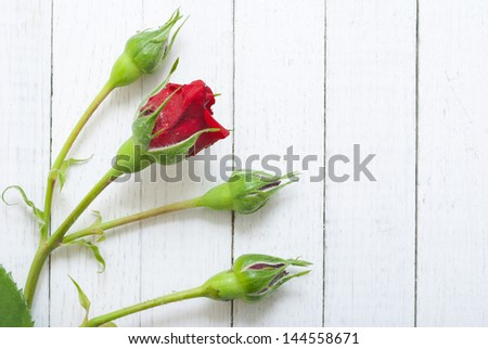 heart shape from red rose petals on wood surface