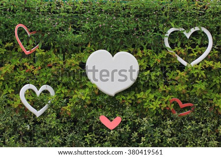heart shape in the garden - stock photo