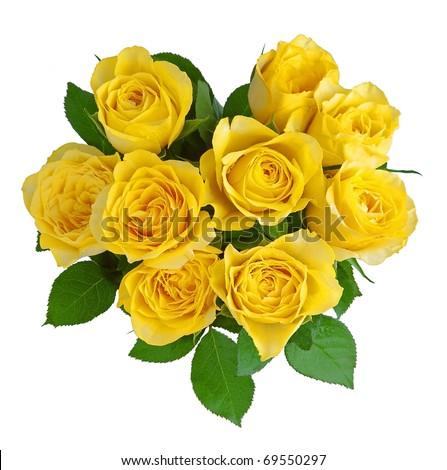 Heart-shape yellow roses isolated on white. - stock photo