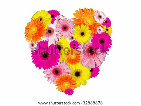 Heart-shaped arrangement of brightly coloured gerbera flowers