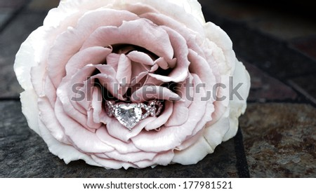 Heart shaped engagement ring hidden inside a pink rose - stock photo