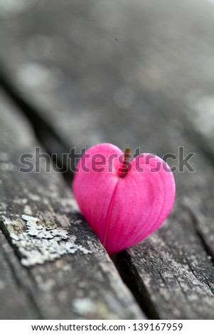 heart-shaped flowers on wooden surface - stock photo