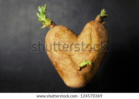 Heart shaped potato on dark background