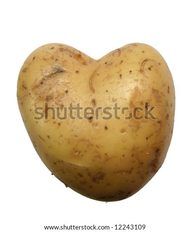 Heart shaped raw potato (isolated on white)