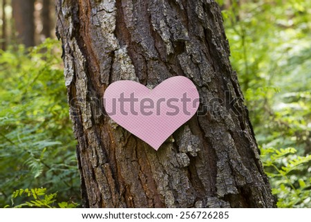 Heart stuck to a pine tree symbolizing love for nature - stock photo