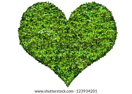 Heart symbol in green leaves - stock photo