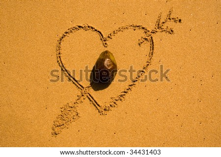 Heart with coconut in the sand - stock photo