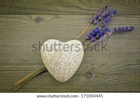 heart with lavender flower, valentines day - stock photo