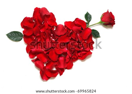 heart with petals from red roses - stock photo