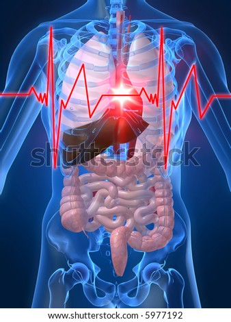 heartbeat/heartattack - stock photo